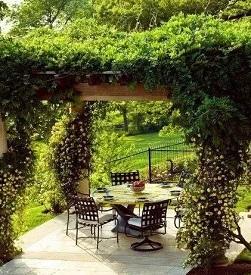 花架在景观园林中的应用