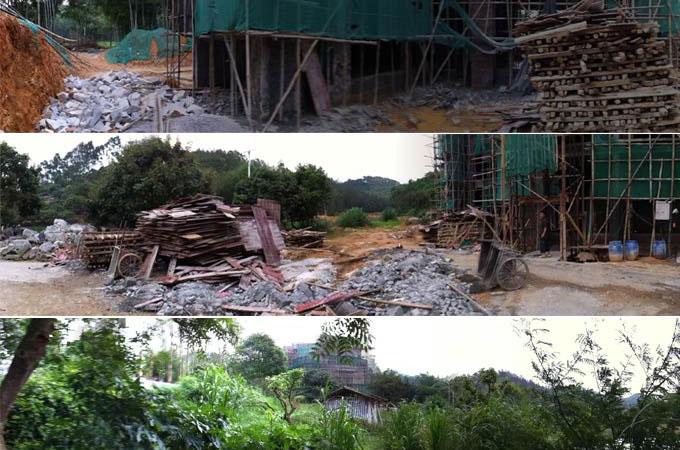 增城刘总别墅园林景观装修