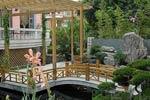 现代别墅花园